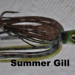 Creek Summer Gill